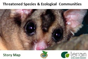 Threatened Species Story Map