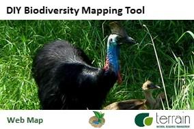 Lumholtz's tree-kangaroo habitat mapping